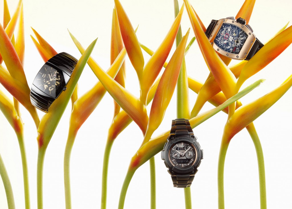 watches and jewellery, watches on flowers, watch photography, still life photography, David Parfitt, still-life, still-life photography, still-life photographer, still-life photographer London, David Parfitt