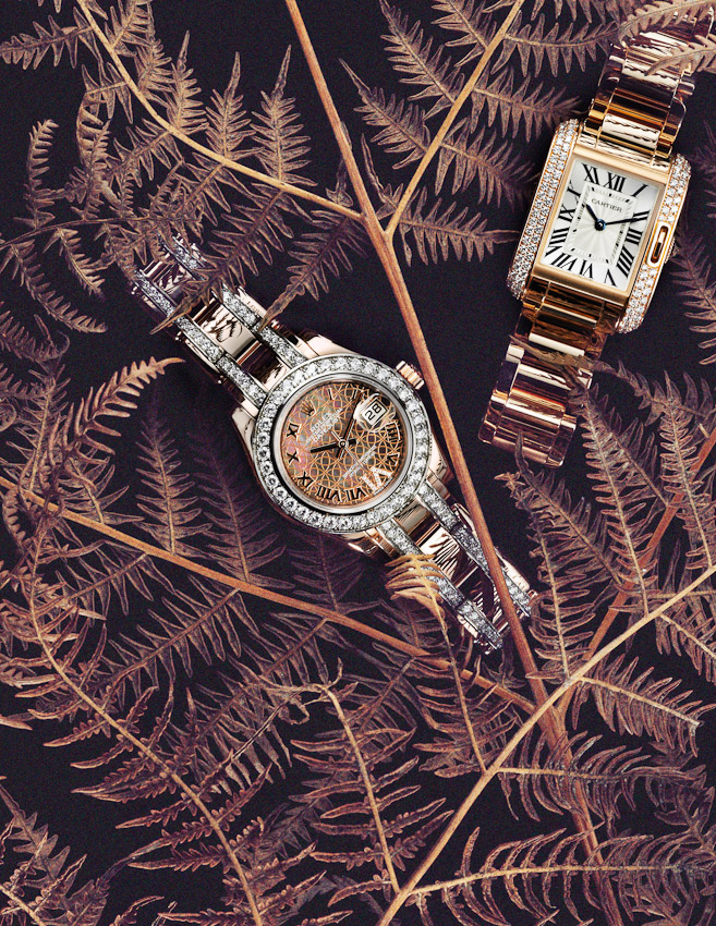 watches with dried ferns, Square Meal watches and Jewellery, watches still-life, watches and jewellery, luxury accessories, watch photographer, luxury men's and women's accessories photography, watches photography,  still-life photography, David Parfitt, still-life, still-life photography, still-life photographer, still-life photographer London, David Parfitt, advertising photographer