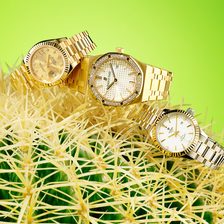 watches on cacti,still-life, still life photographer, still life photography, still life photographer London, watches and jewelry watches and jewellery, watches and jewellery photography, watches photography, watches photographer, watch photographer London, fashion photographer, David Parfitt, Rolex,