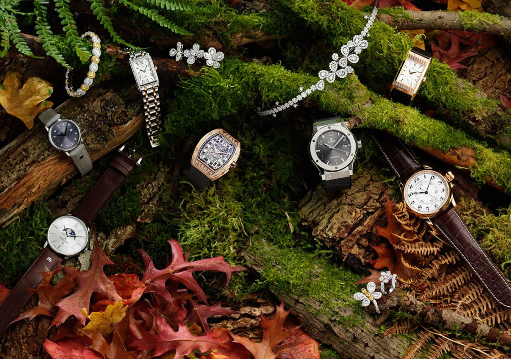 Watches and jewellery on forest floor